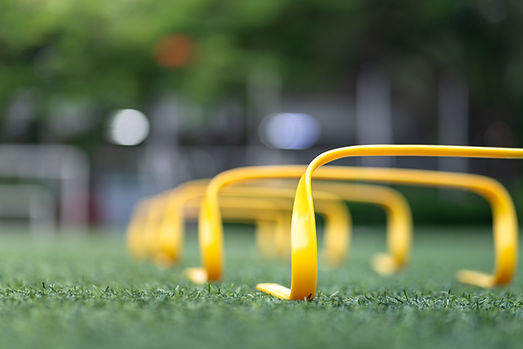 A set of obstacle for leg strength and speed practice, placed on football training turf gr