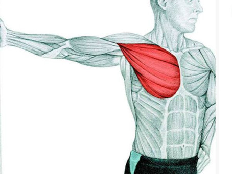 Back, Neck and Upper Body - Stretches Routine