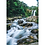 Thumbnail: Tawhai Falls