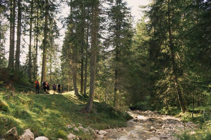 Alpine Trail Val De Funes
