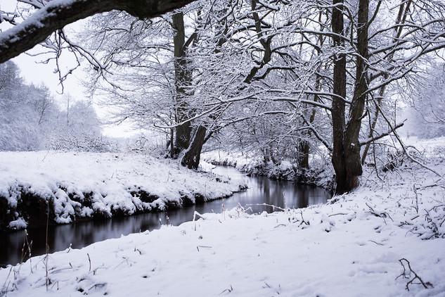 Ledreborg Snow, Denmark