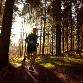 One Planet, One Life - Danish Trail Running