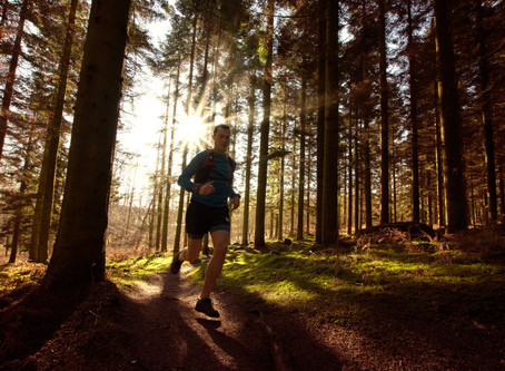 One Planet, One Life - Danish Trail Running