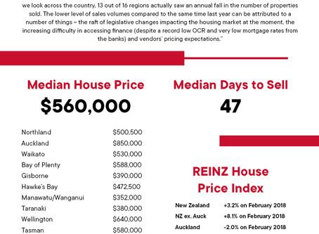 2019年 2月 REINZ住宅統計レポート