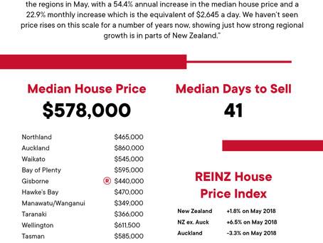2019年 5月 REINZ  住宅統計レポート
