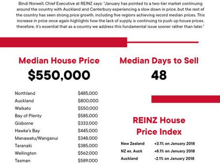 2019 年 1月 REINZ 住宅統計レポート