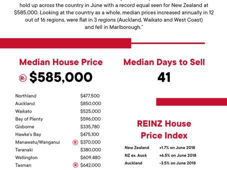 2019年 6月 REINZ 住宅統計レポート