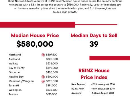 2019年8月REINZ 住宅統計レポート