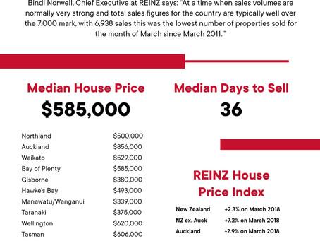 2019年 3月 REINZ住宅統計レポート