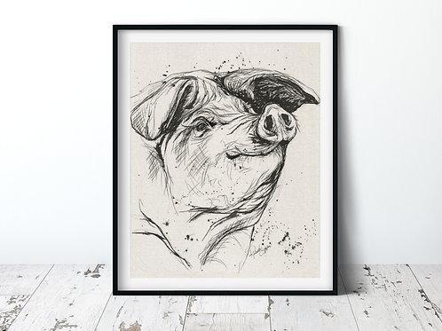 Pig | 11x14 Unframed Print