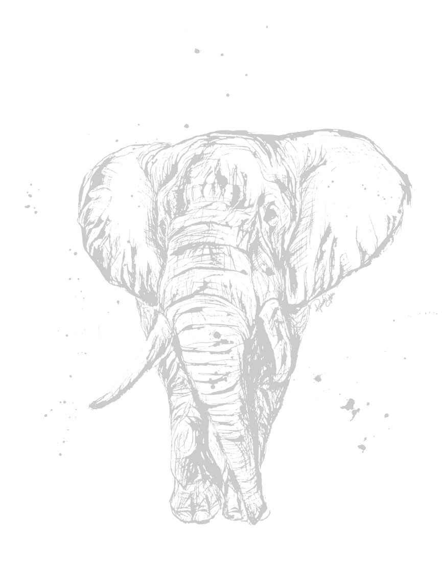 Elephant%20Sketch_edited.png