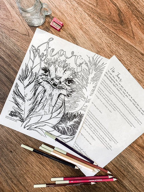 No Fear Coloring Devotional