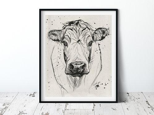 Cow | 11x14 Unframed Print