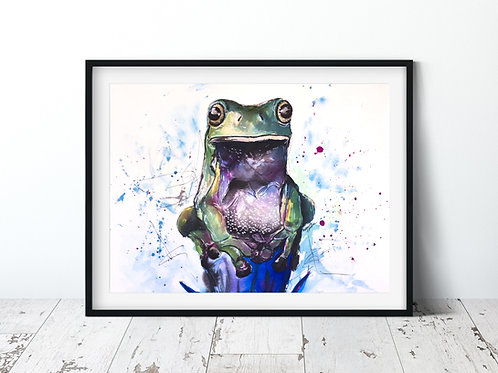 FROG  | Unframed Print