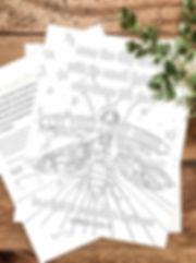 coloring sheet stock image.jpg