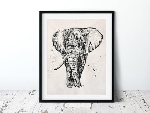 Elephant | Unframed Print