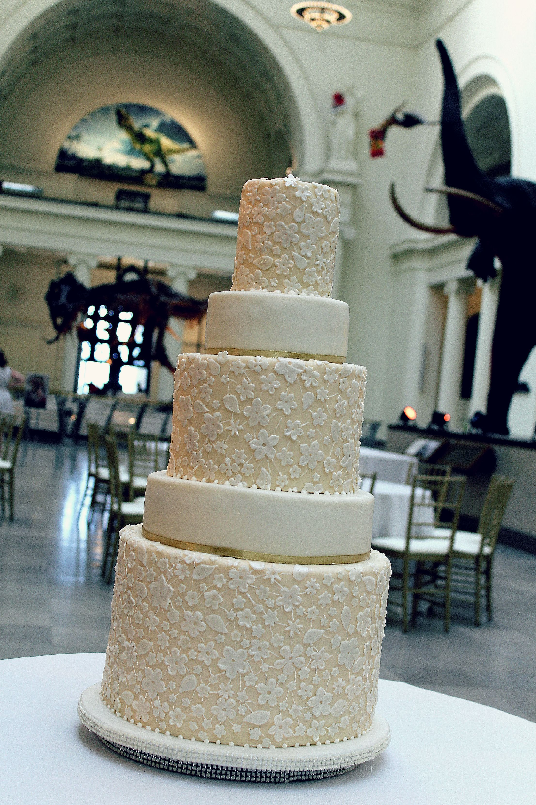 field museum lace wedding cake canon edit.jpg