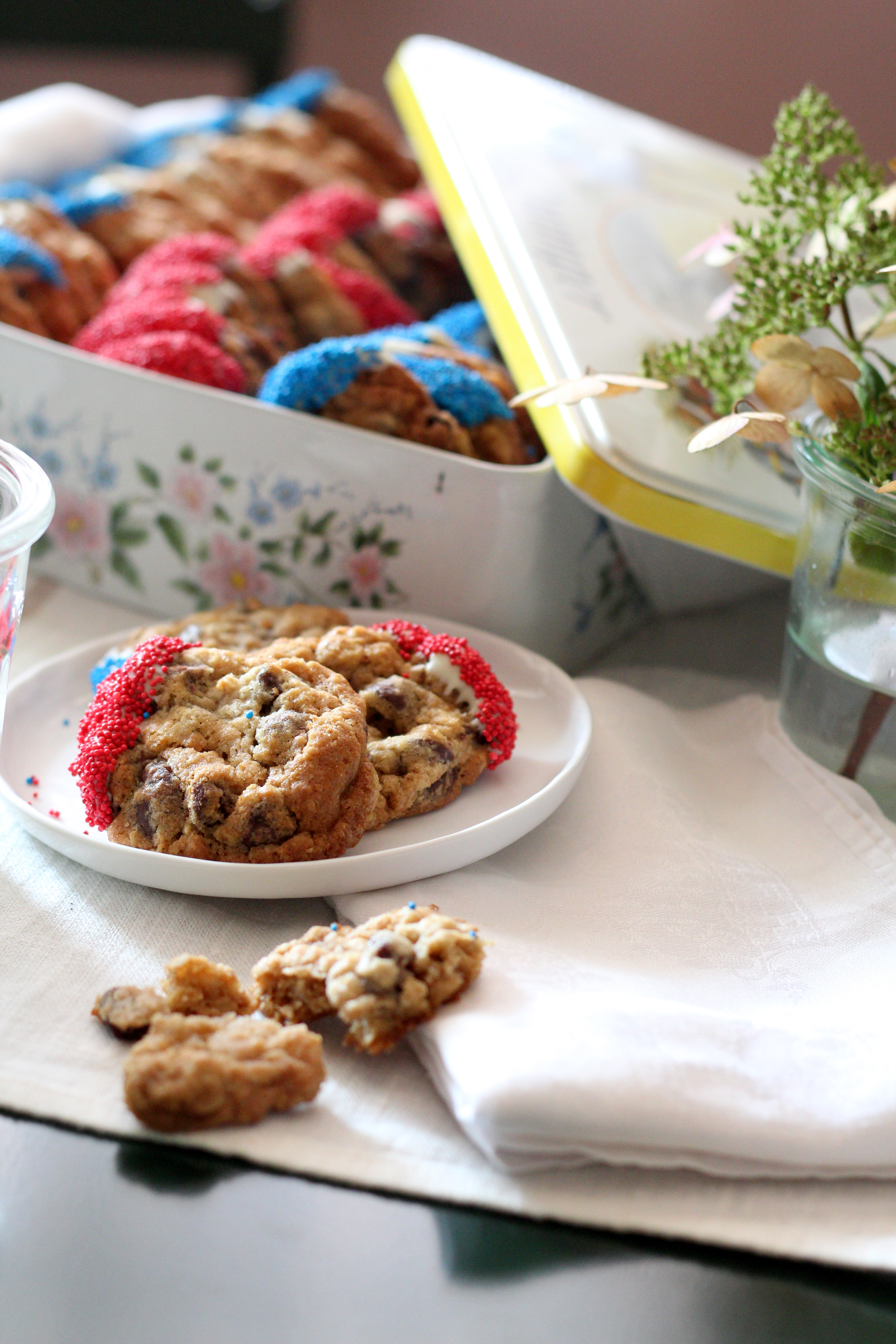Raisin Oatmeal and chocolate Chip cookies in red and blue.JPG