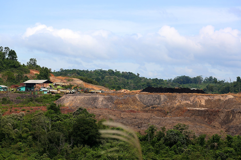 Surface vegetation removed for coal mining in Kalimantan Indonesia
