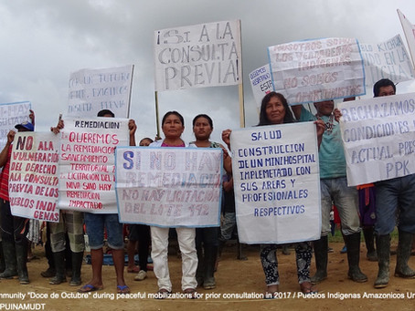 PROTECTING INDIGENOUS RIGHTS AND THE AMAZON AMIDST A GROWING CLIMATE CRISIS