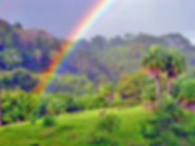 Rainbow .jpg