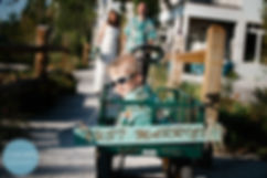 Anna Maria Island Vacation Rentals Home Rentals Beach Weddings