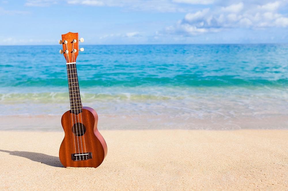 Guitar on Beach - Bayfest 2016