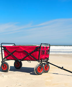 BOOK NOW - BEACH RENTALS, THINGS TO DO, RENTALS, TOURS and ACTIVITIES on Anna Maria Island, Florida!