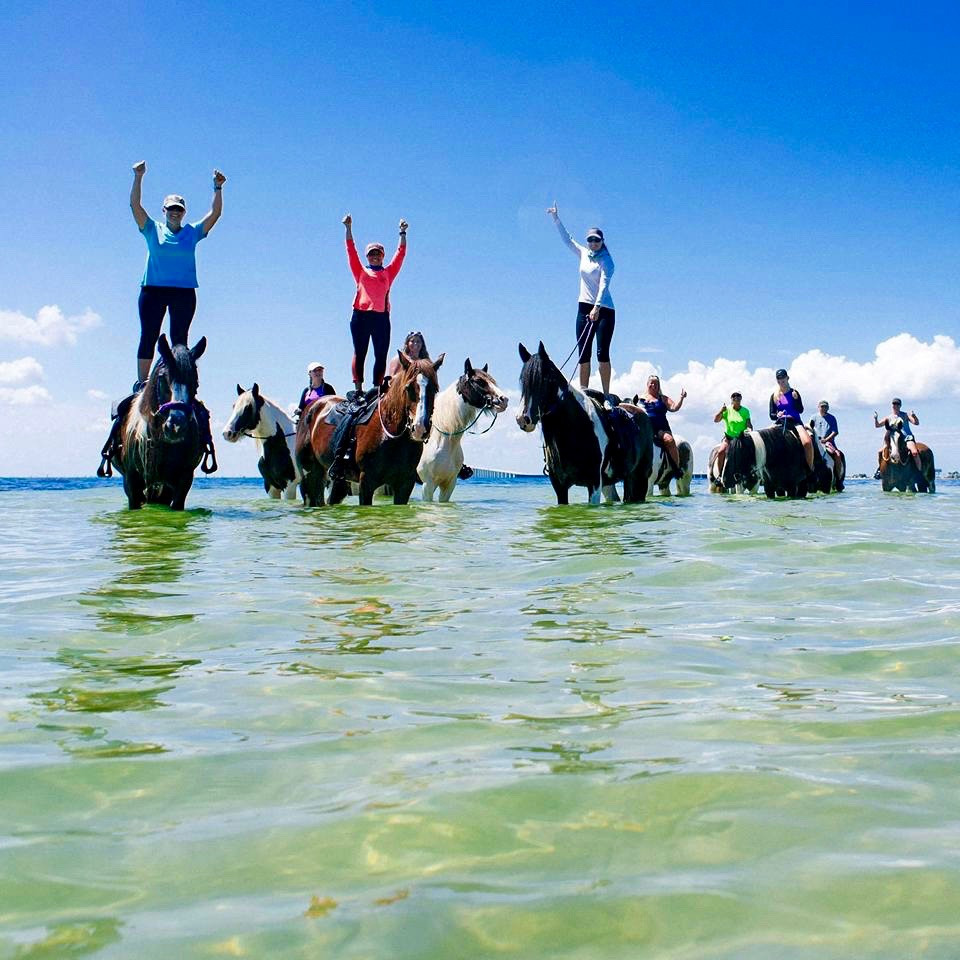 Horsesurfing on Anna Maria Island, Florida