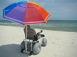 BOOK NOW - BEACH WHEELCHAIRS, THINGS TO DO, RENTALS, TOURS and ACTIVITIES on Anna Maria Island, Florida!