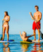 BOOK NOW - PADDLE BOARD RENTALS, THINGS TO DO, RENTALS, TOURS and ACTIVITIES on Anna Maria Island, Florida!