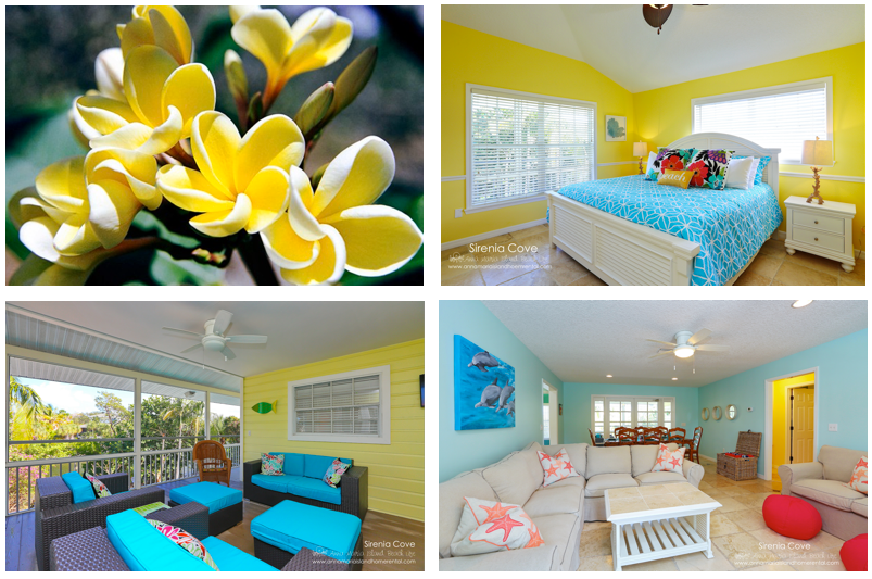 Beautiful Coastal vignette of Design at Sirenia Cove Vacation Rental