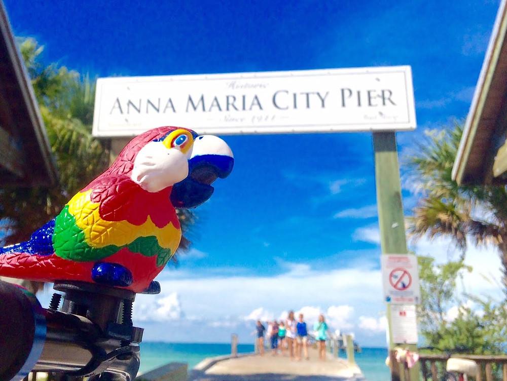 Parrot at Anna Maria City Pier