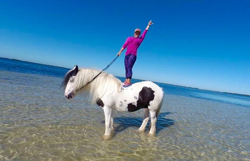 Horse Surfing on Anna Maria Island, Florida