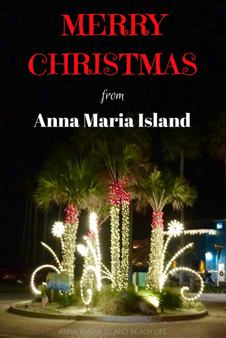 Christmas Palm Trees Anna Maria Island