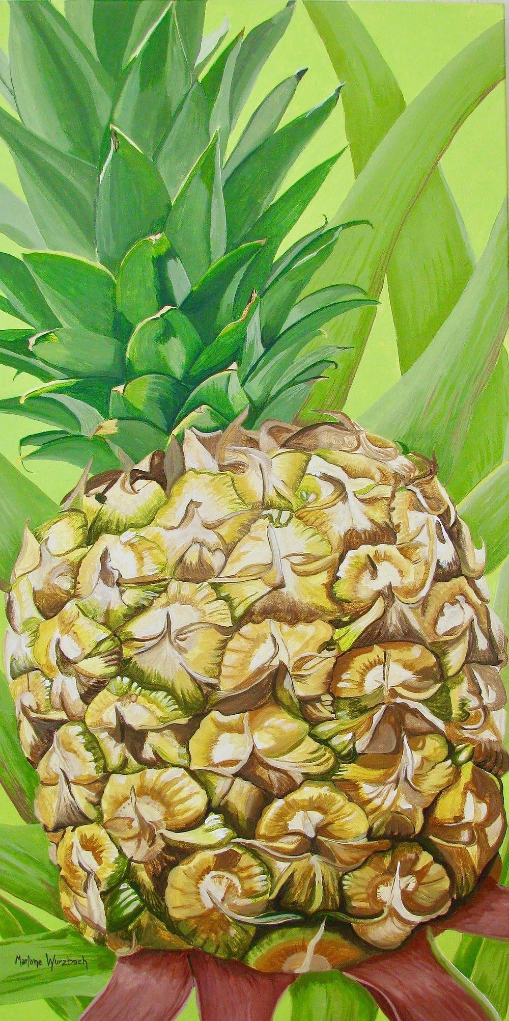 Pineapple - Maralane Wurzbach