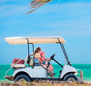 BOOK NOW - GOLF CART RENTALS, THINGS TO DO, RENTALS, TOURS and ACTIVITIES on Anna Maria Island, Florida!