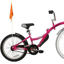 Tag Along Bike.jpeg