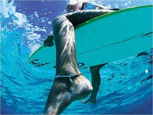 BOOK NOW - PADDLE BOARDING, THINGS TO DO, RENTALS, TOURS and ACTIVITIES on Anna Maria Island, Florida!