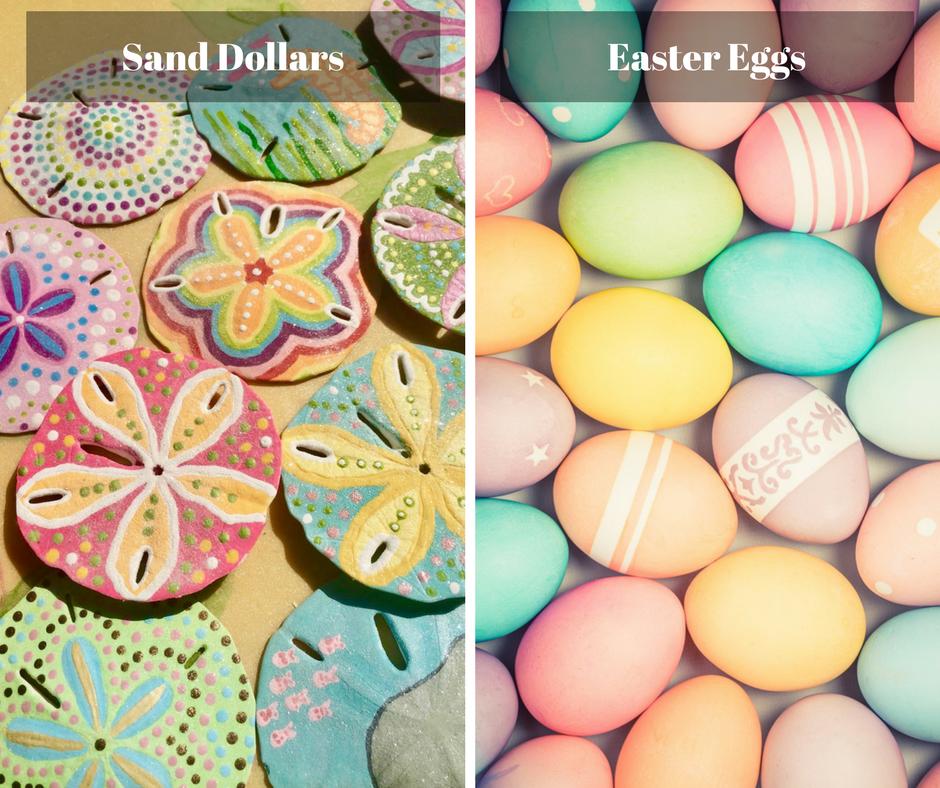 Painted Easter Sand Dollars vs Easter Eggs