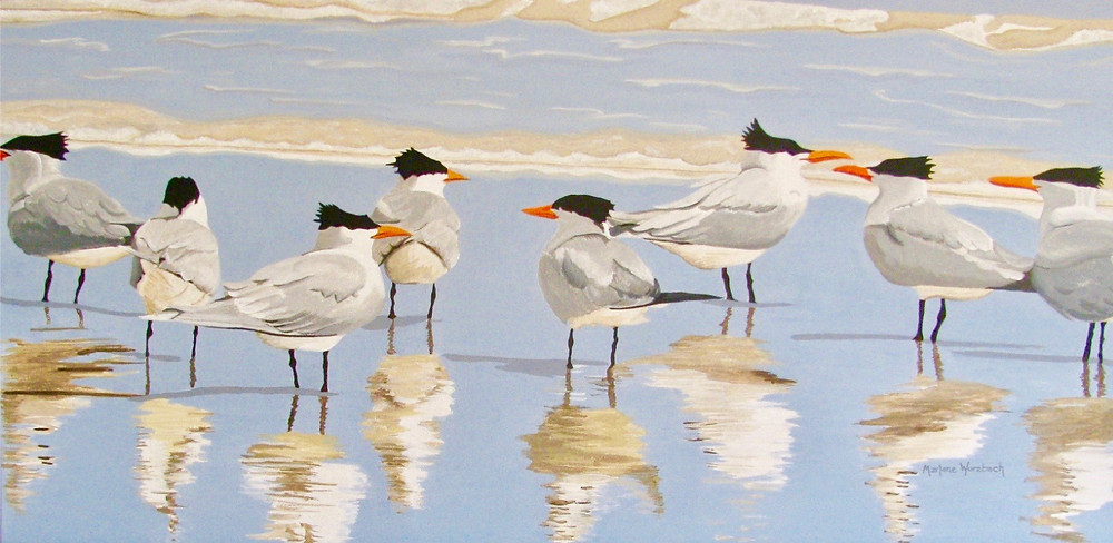 Tern Tern Tern - Marlane Wurzbach