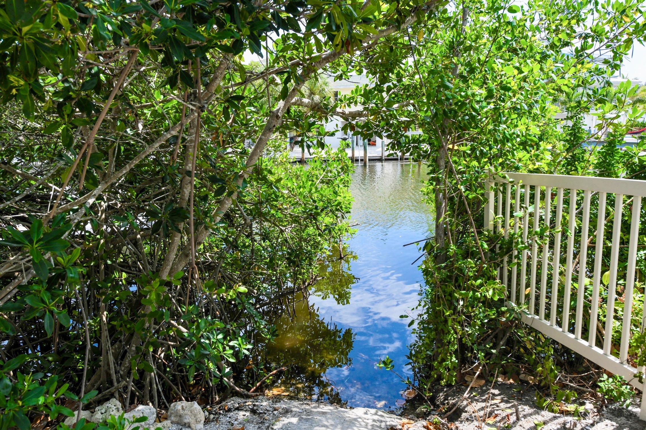 Sirenia Cove Kayak Launch