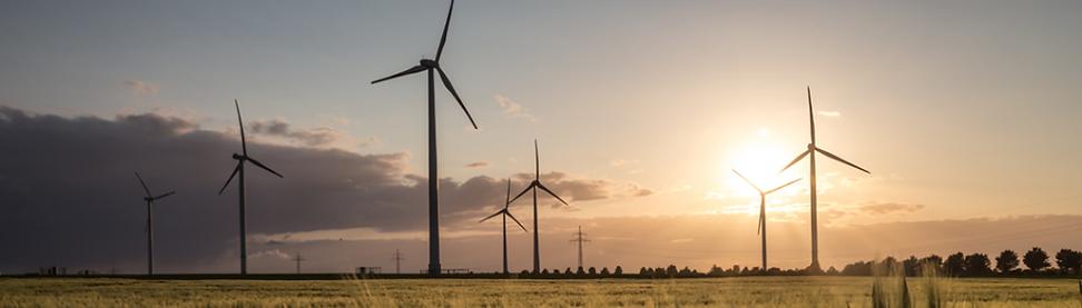 wind turbine farm sundown.png
