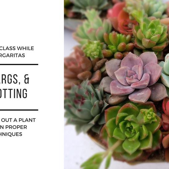Yoga, Margs, & Plant Potting