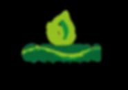 Green Graphiqs logo-01.png