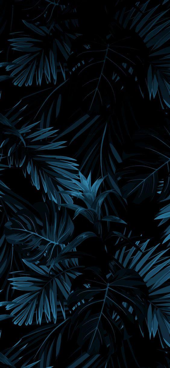 Dark blue palm leaves.jpg