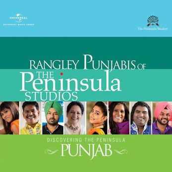 Rangley Punjabis - Volume 8