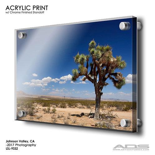 JOHNSON VALLEY, CA: Acrylic Print