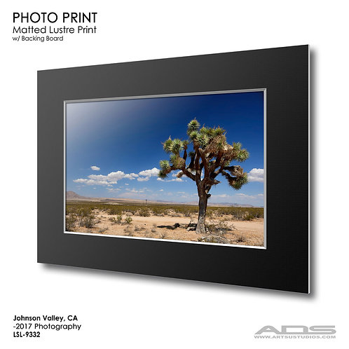 JOHNSON VALLEY, CA: Photo Print