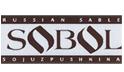 logo_sobol.png